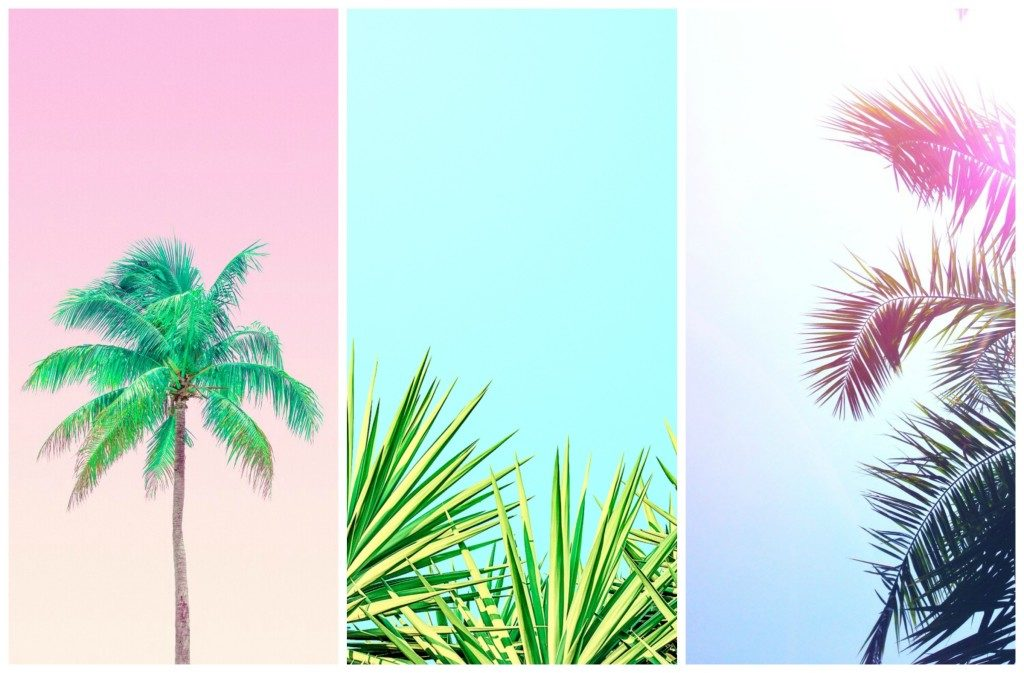 summer wallpapers Pinterest