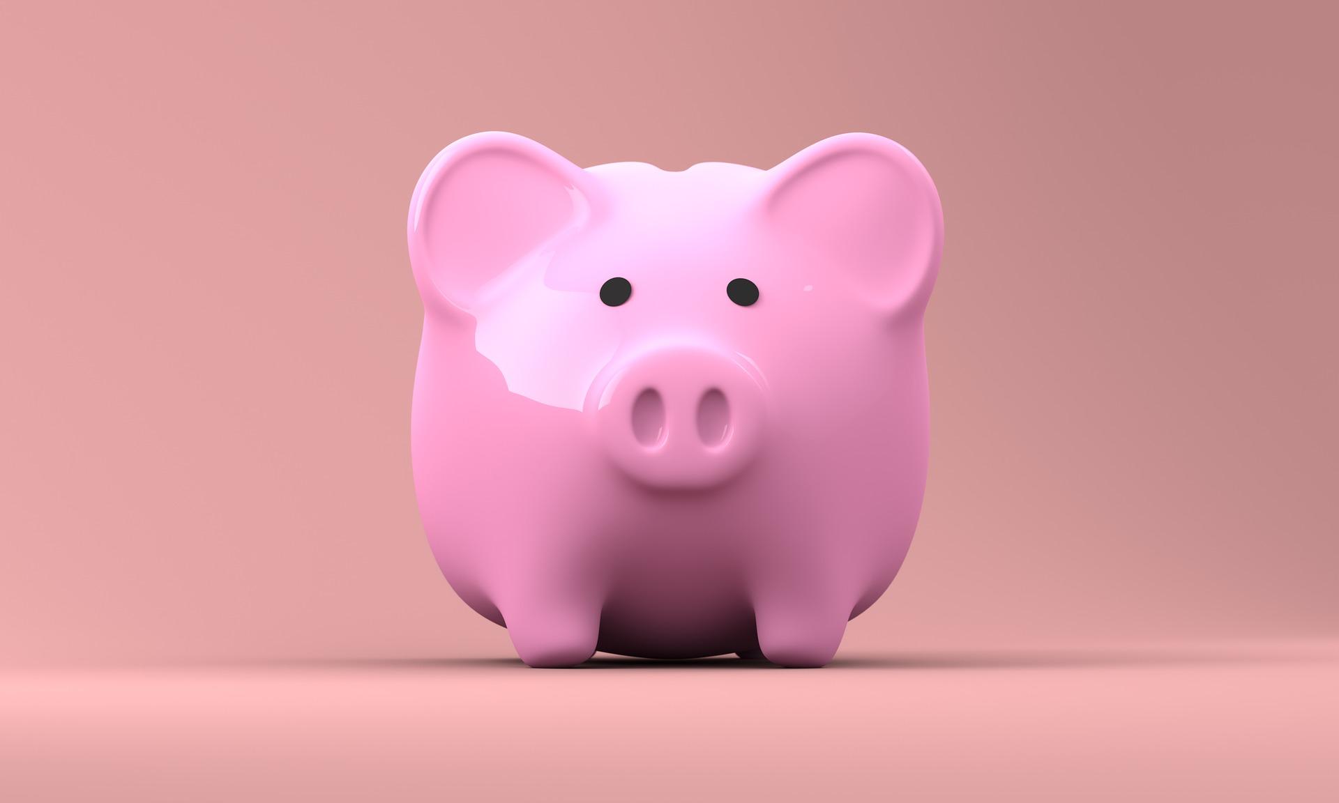 piggy bank spaarpot