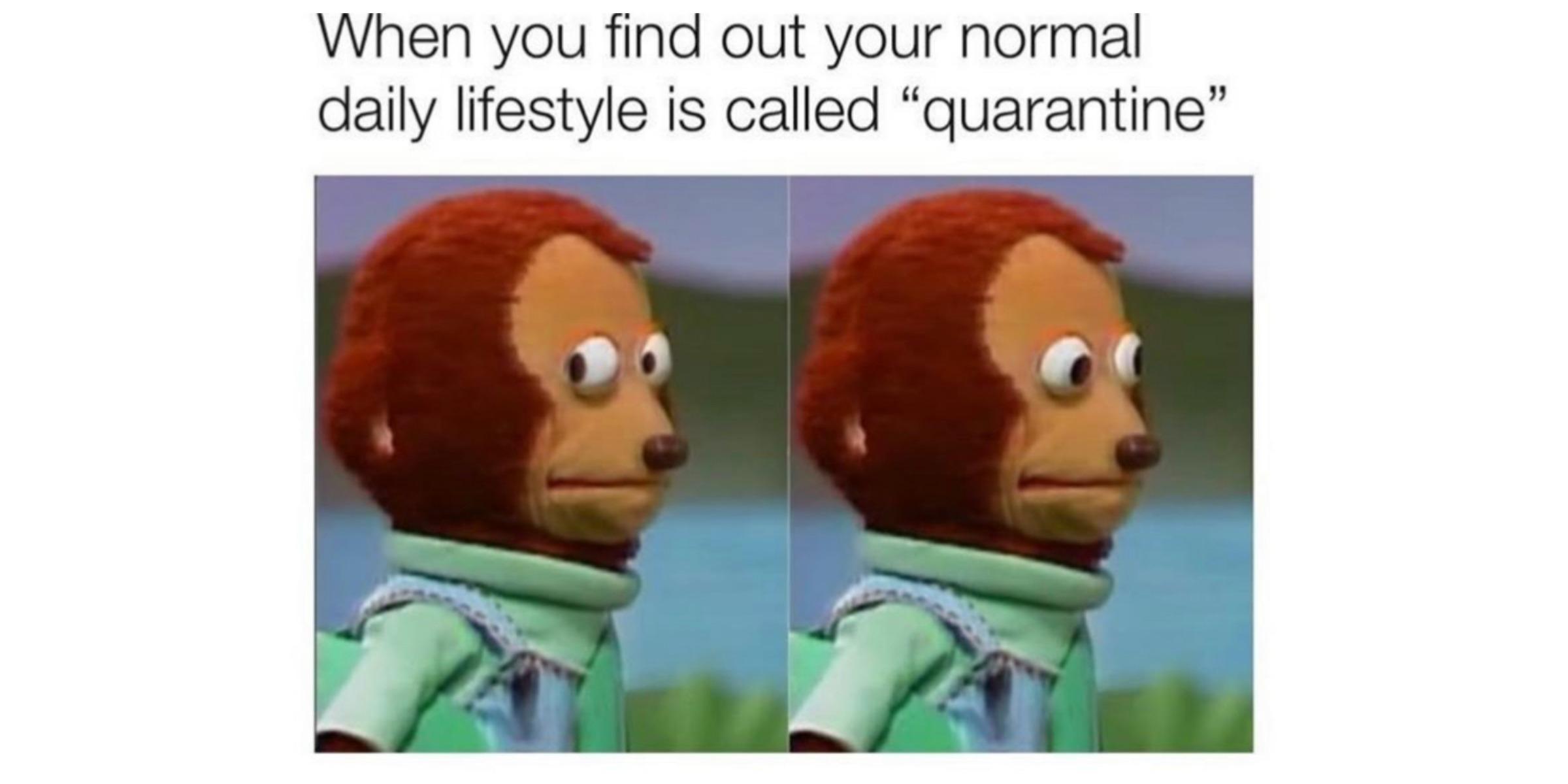 TGIB WEEKLY: Quarantine meme