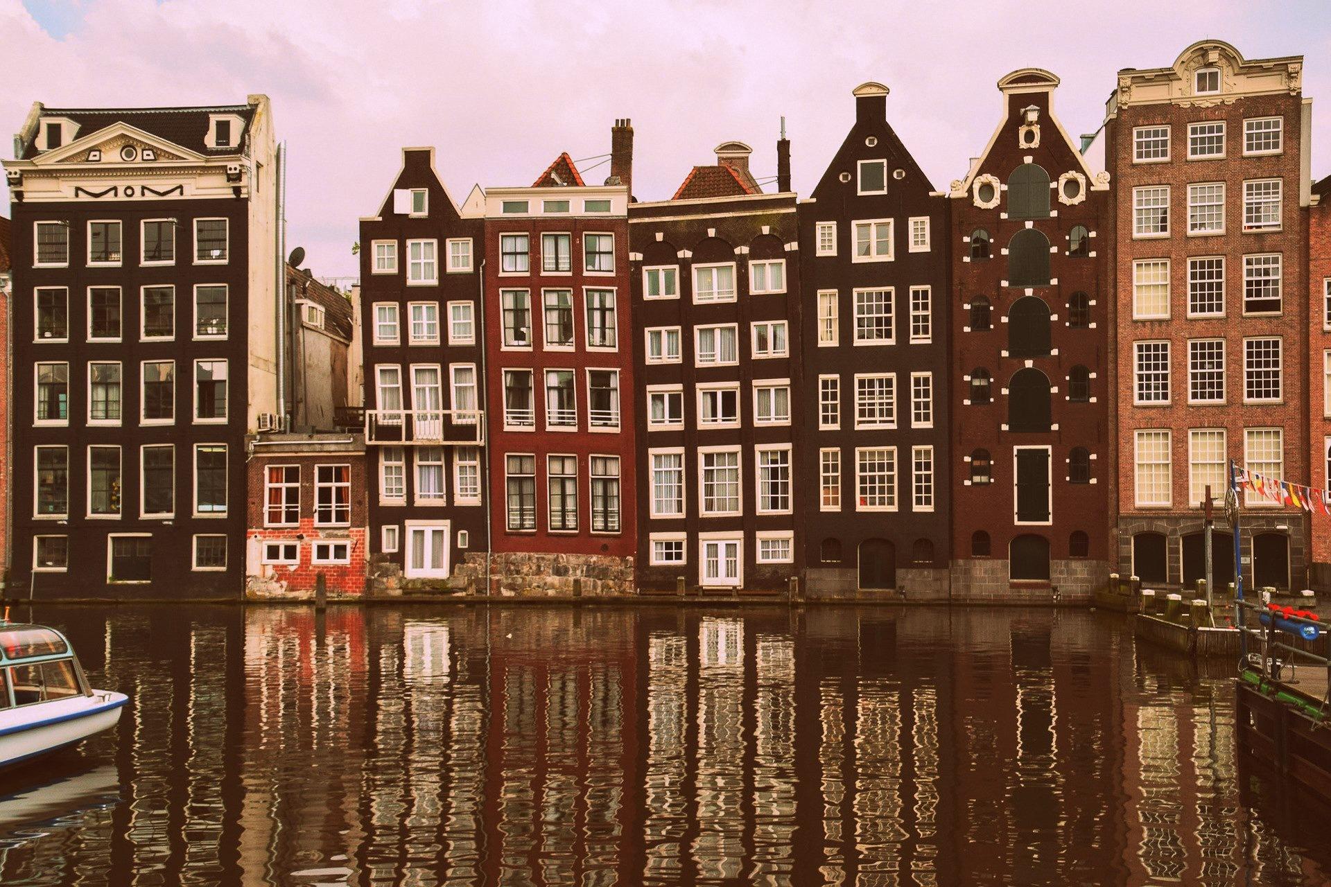 Just Dutch tag