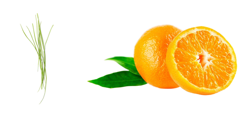 vetiver mandarijn