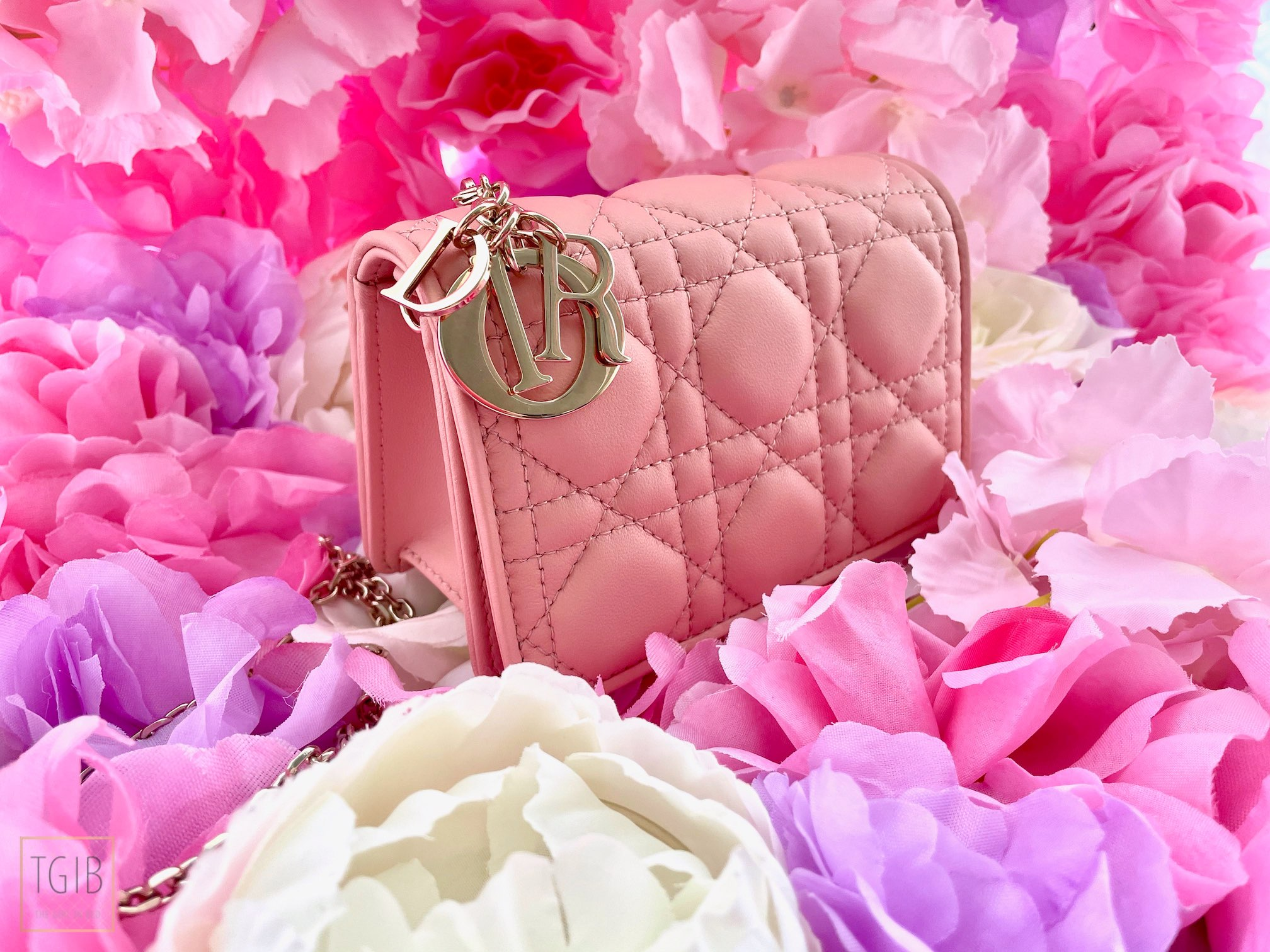 1 What Fits In My Lady Dior Nano Pouch angel pink